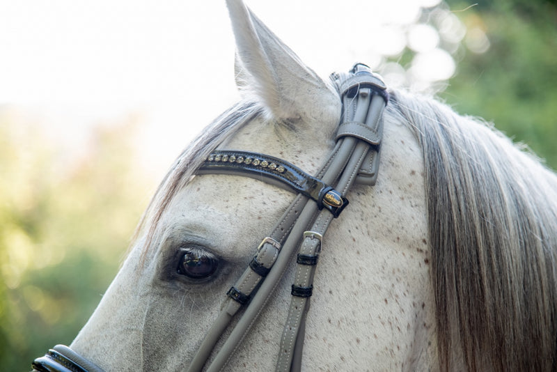 ST-BR/015 Grey Soft Rolled Leather Bridle with Extra Padding
