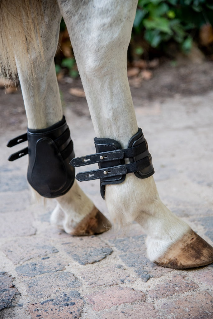 tendon and fetlock boots on horse