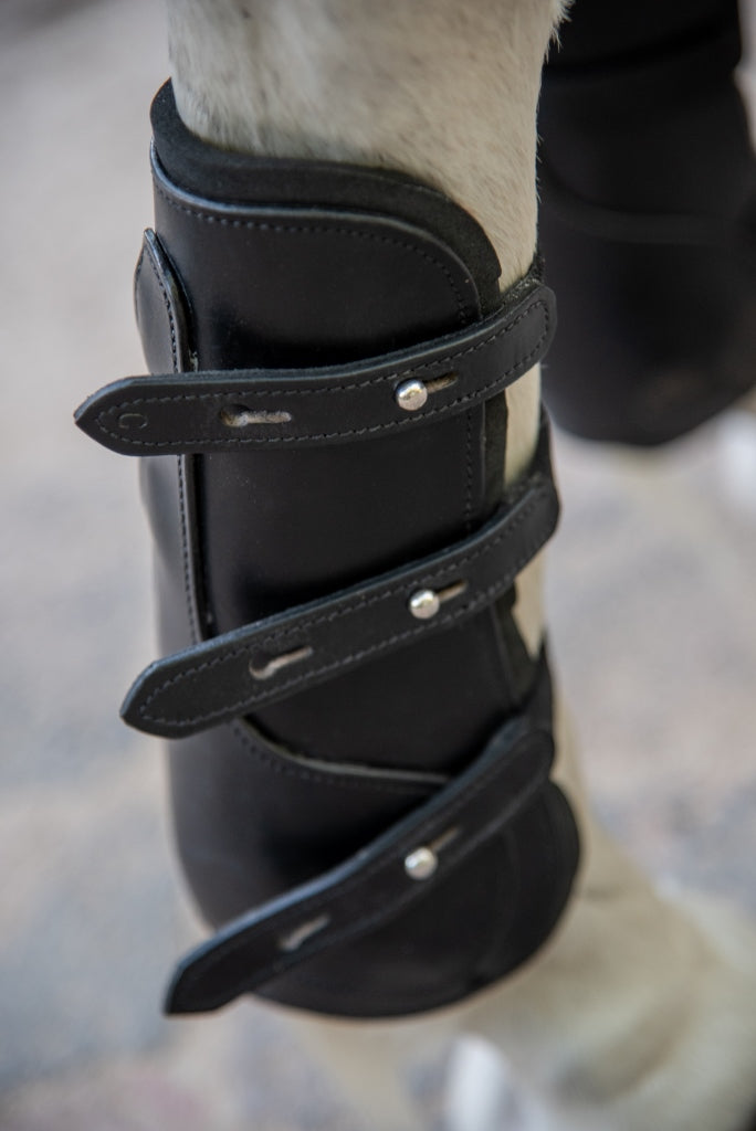 black tendon and fetlock boots on horse