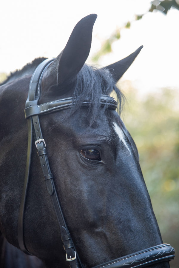 ST-BR/025 Black Leather Relief Bridle with Stitching