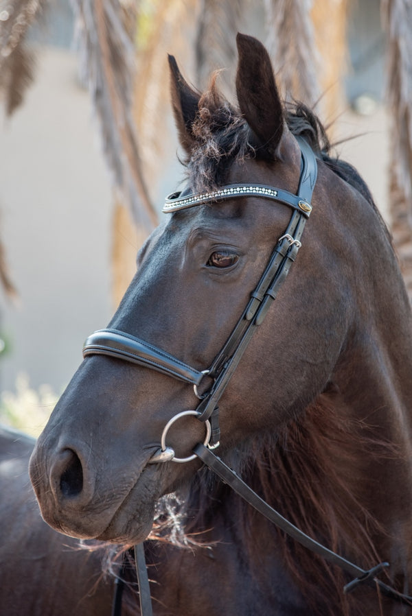 ST-BR/020 Black Leather Snaffle Bridle with Silver Crystals