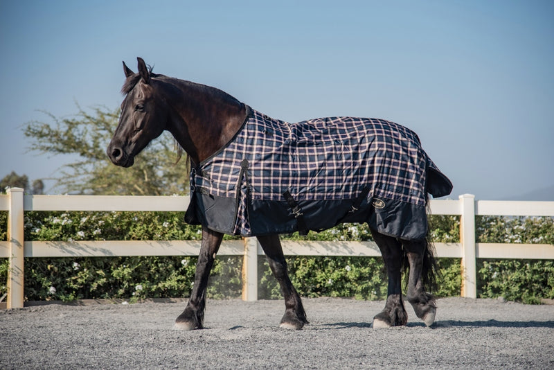 Black & Beige Rain Rug on Horse