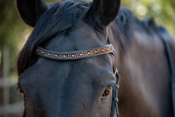 ST-BBD/007 Black Leather Browband