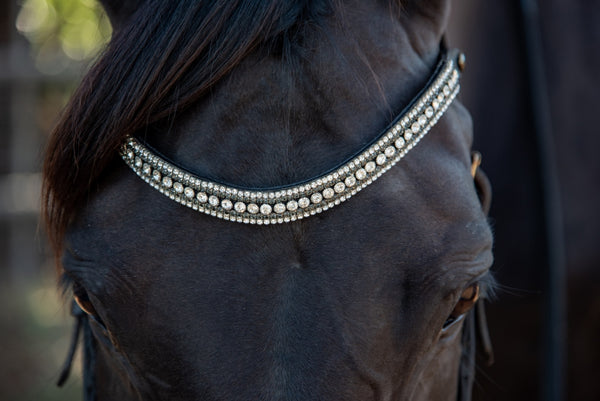Black Leather Browband on Horse