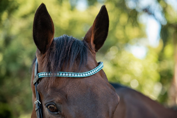 ST-BBD/013 Black Leather Browband