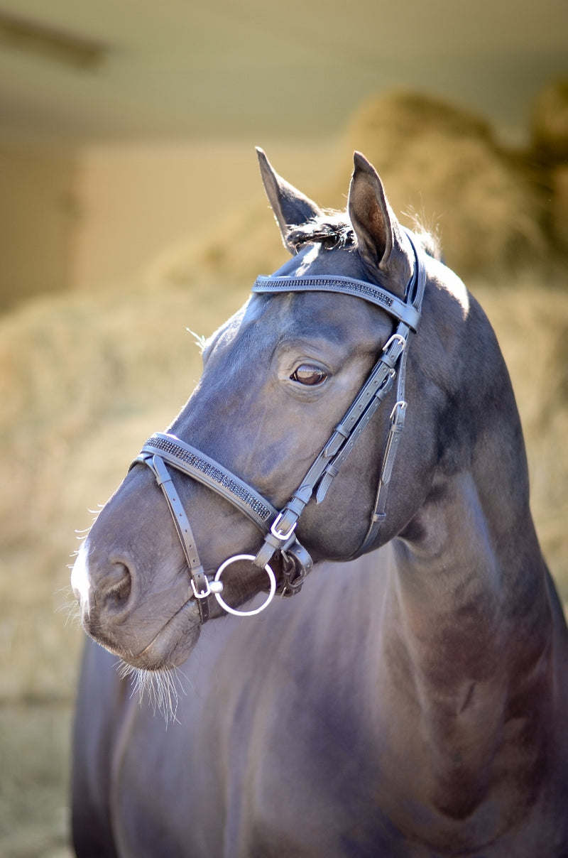 ST-BR/003 Black Leather Bridle with Black Diamantes