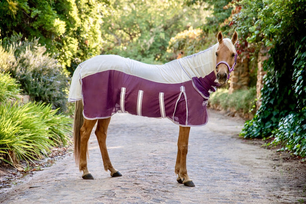 ST-FR/003 White & Purple Fly Sheet with Neck Piece & Fly Mask