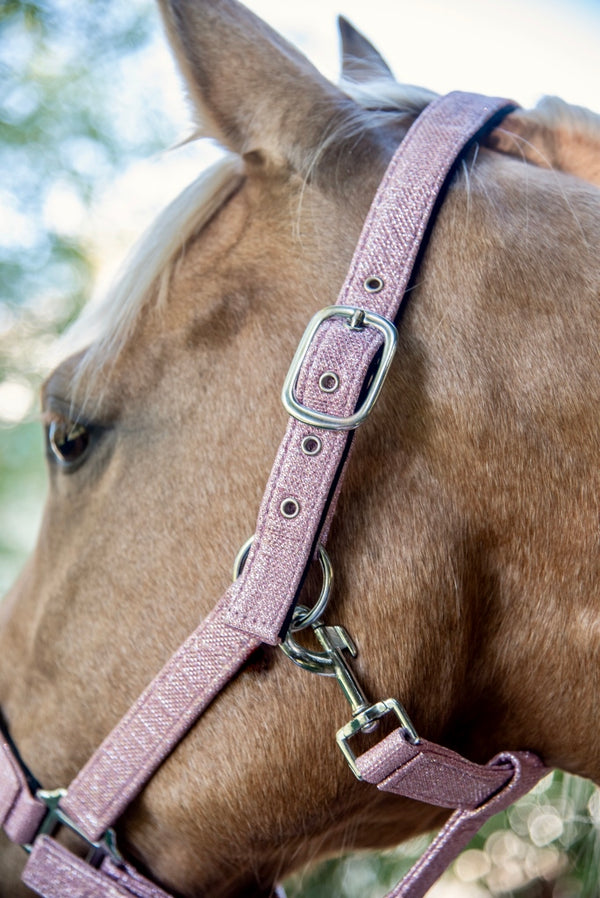 Shiny Pink Fabric Halter with Lead