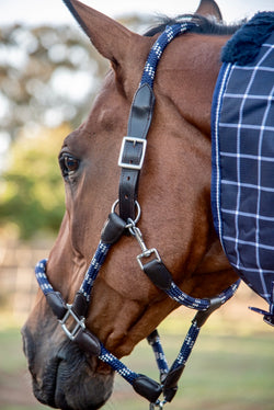 Navy Blue & White Rope Halter with Lead
