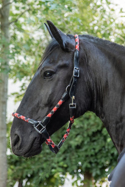 Red, White & Black Rope Halter with Lead