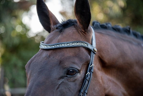 ST-BBD/002 Black Leather Browband