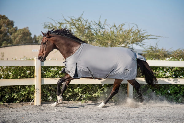 ST-TR/002 Silver Turnout Rug