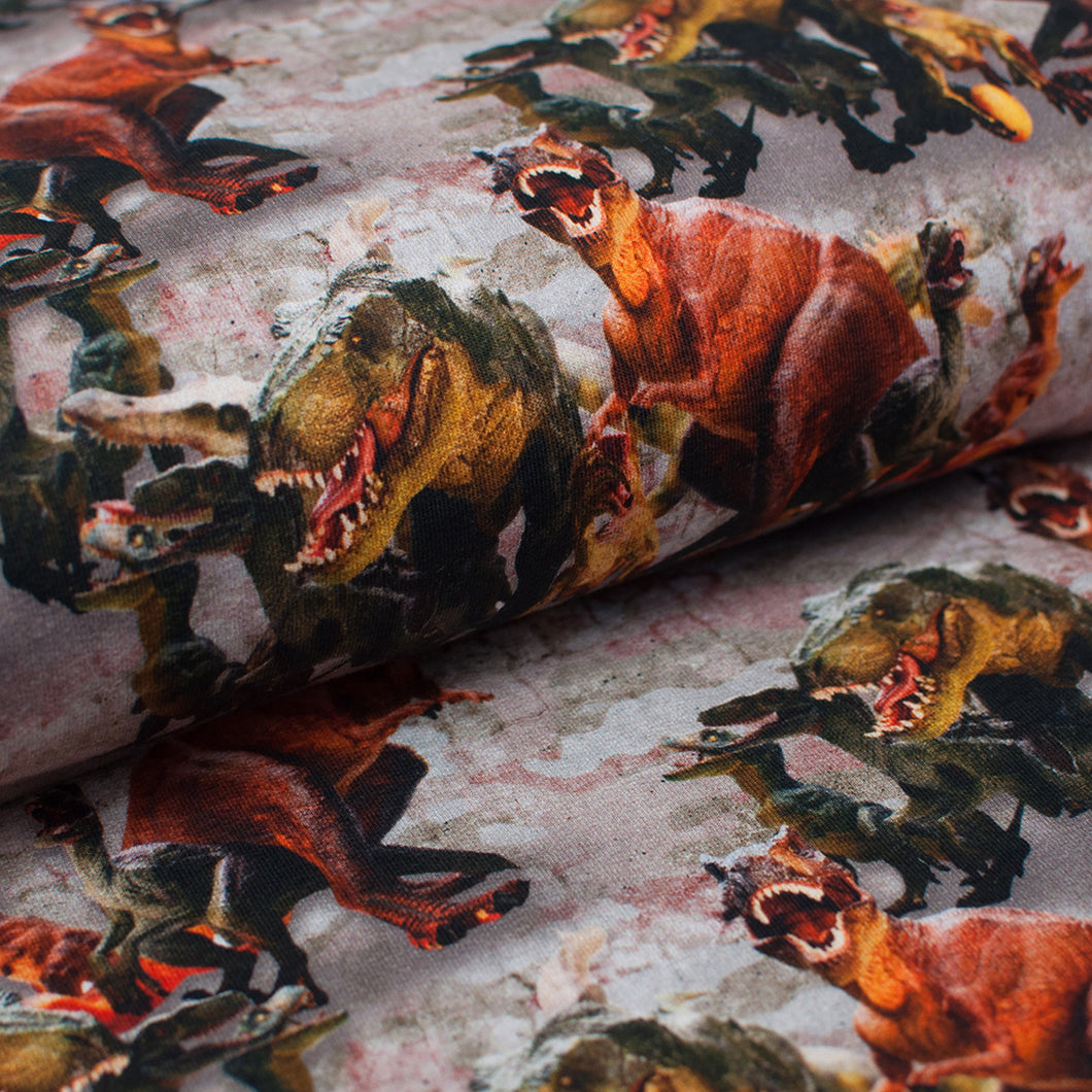 DINOSAURES<br>coton/spandex<br>french terry