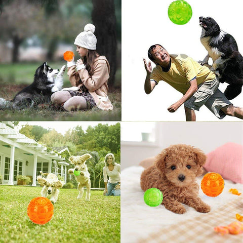 Chew Toy For Pets - beyondtrendi