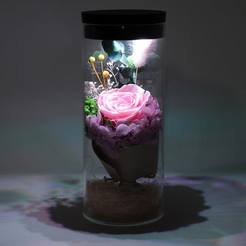 Eternal Flower Night Light - beyondtrendi