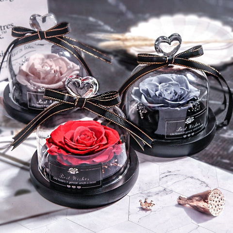 Preserved Eternal Rose With Glass Cover - beyondtrendi