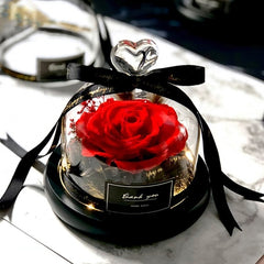 Preserved Eternal Rose With Glass Cover