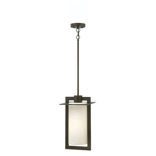 Hinkley Lighting Colfax 1 Light Outdoor Hanging, Bronze