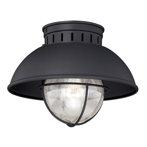 "Vaxcel Harwich 10"" Outdoor Flush Mount"