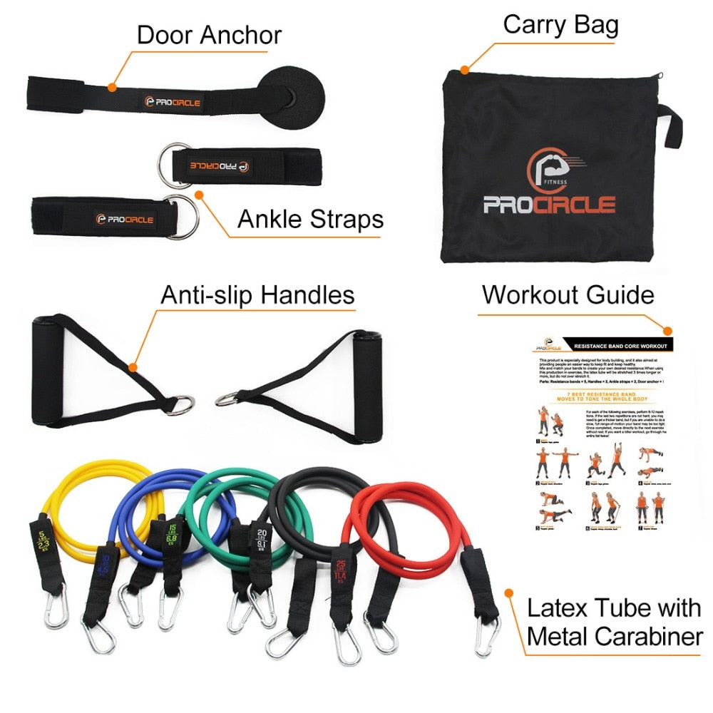 Set of 16 Pcs Resistance Bands for Training & Physical Therapy