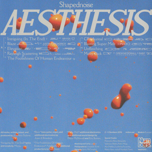 Shapednoise - Aesthesis (LP)