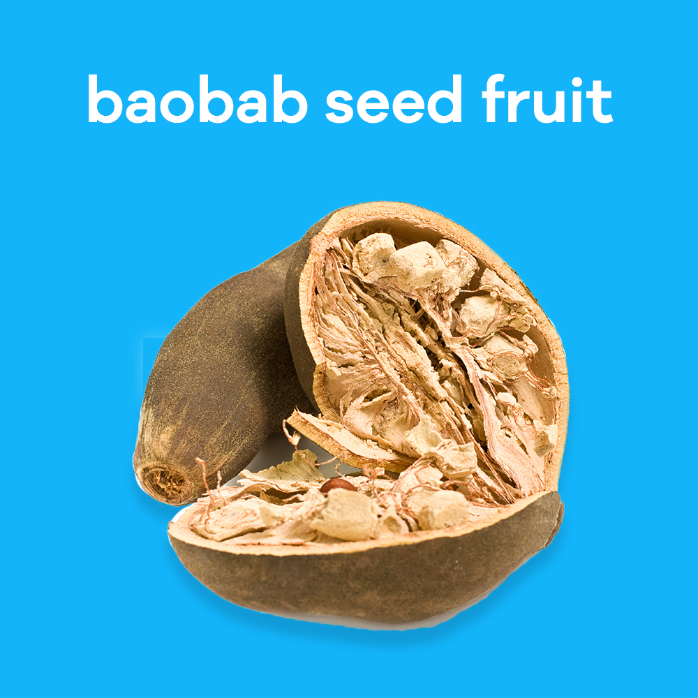 Baobab seed fruit. Baobab seed oil have countless benefits for skin and hair including protection against inflammation, protects against extreme dehydration and rebuilds collagen in skin and hair.