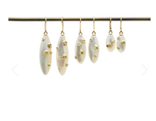 Load image into Gallery viewer, Mother of Pearl earrings with barnacles
