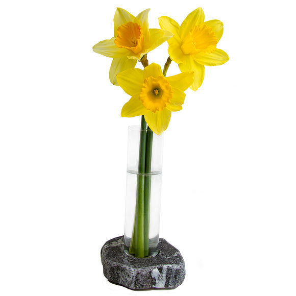Single Bud Vase Granite and Glass Vase with Daffodils