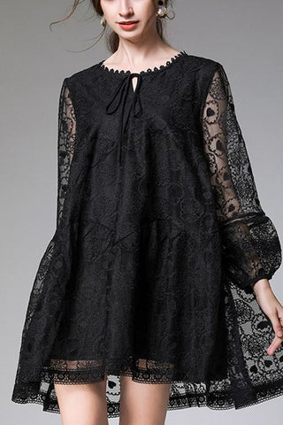VOKJJ Fleshy Lace Embroidered Dress - Hellosuitlady