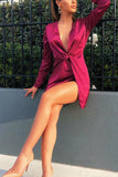 Deep V Pleated Split Sexy Long Sleeve Mini Dress