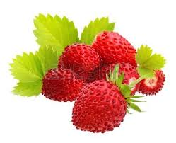 Wild Strawberry Puree