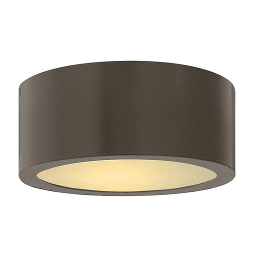 Hinkley Lighting 1 Light Luna Outdoor Flush Mount