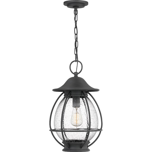 Quoizel Boston 1 Light Outdoor Hanging Lantern, Mottled Black
