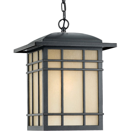 Quoizel 1 Light Hillcrest Large Outdoor Pendant, Imperial Bronze