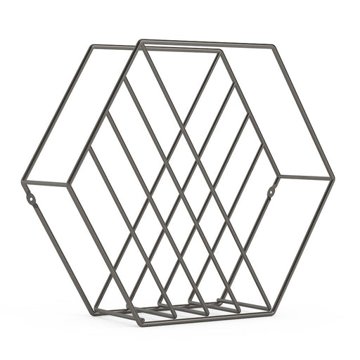 Umbra Zina Magazine Rack & Record Holder, Titanium
