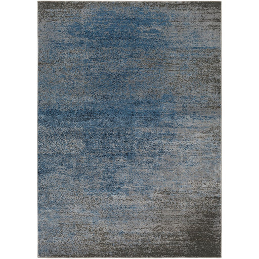 Surya ADO-1010 Amadeo Area Rug in Denim/Light Gray