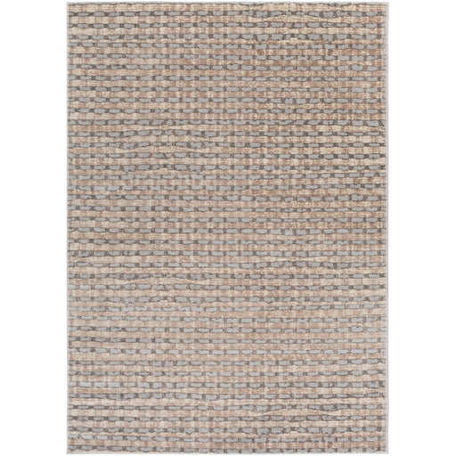 Surya ADO-1012 Amadeo Area Rug in Ivory/Taupe