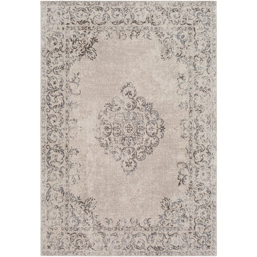 Surya AMS-1005 Amsterdam Area Rug in Medium Gray/Dark Brown