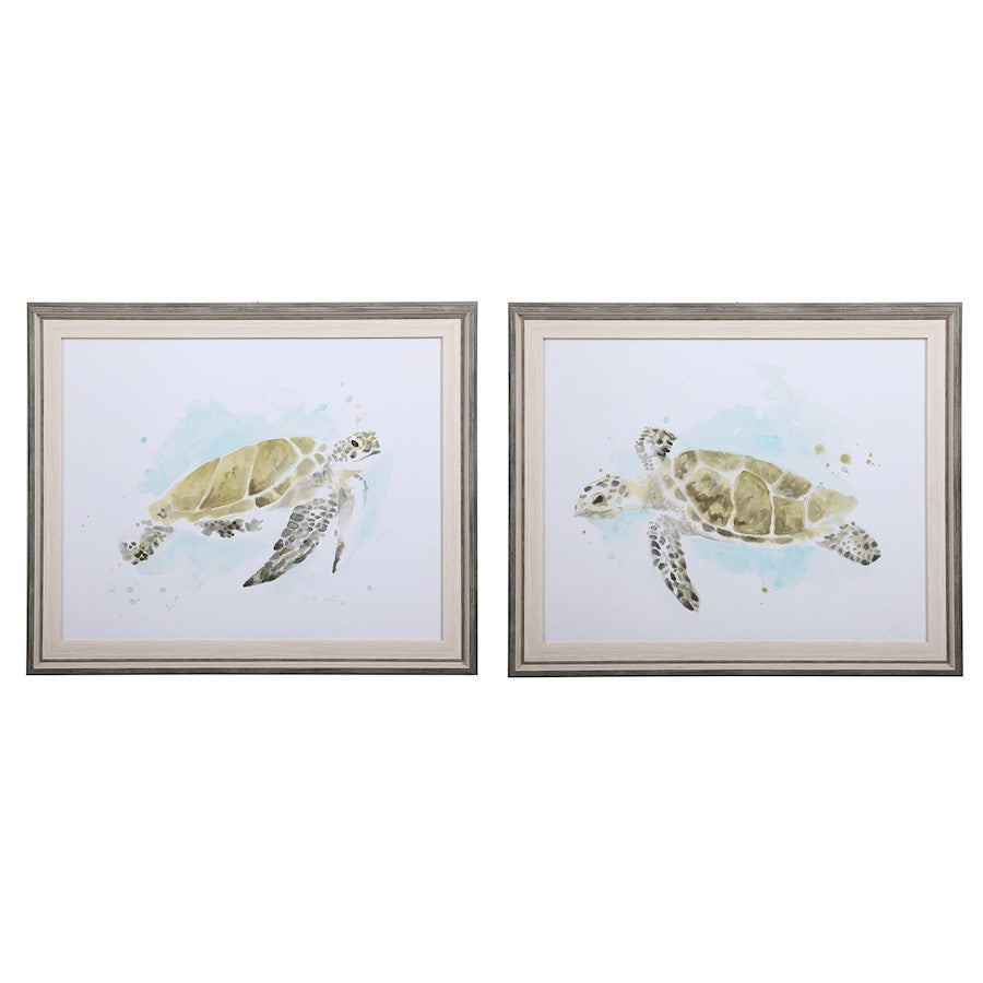 Uttermost Sea Turtle Study Watercolor Prints, Set of 2 - 33720