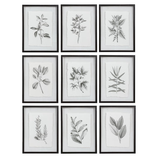 Uttermost Farmhouse Florals Framed Prints, Set of 9, Matte Black Frame - 41617
