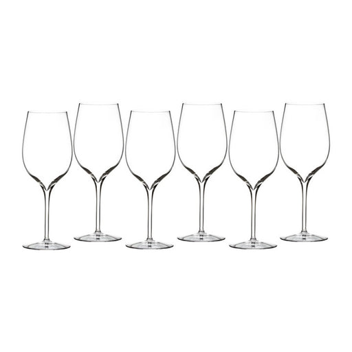 Waterford Elegance Wine Tasting Party Tasting Glass in Set of 6
