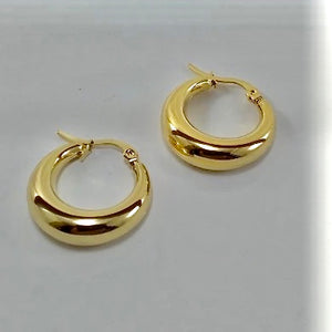 Vero Thick Hoops