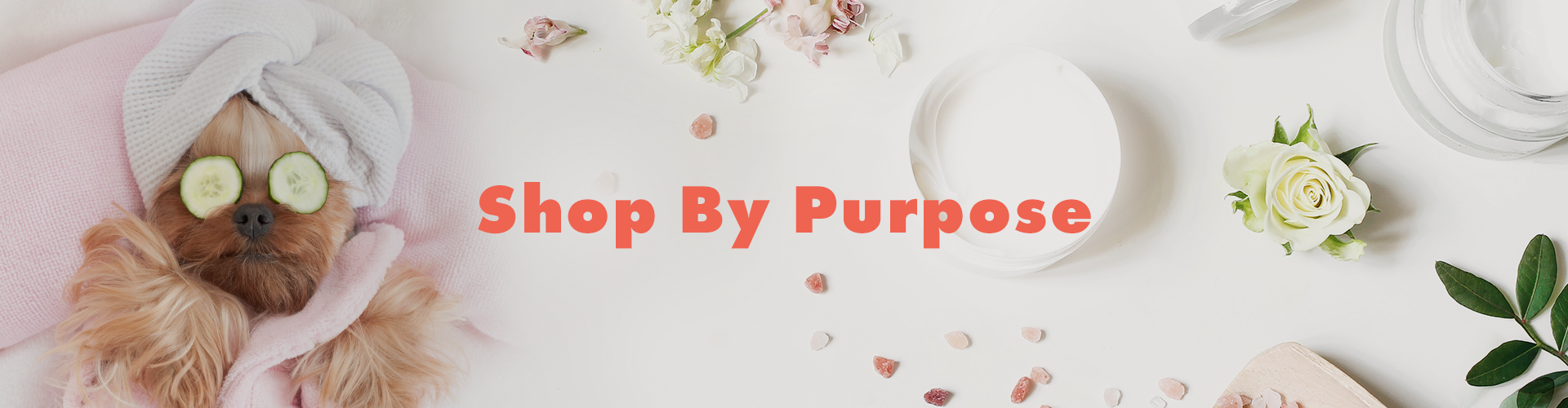 Shop By Purpose