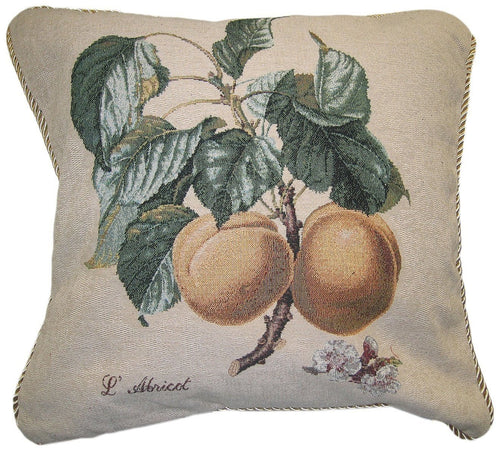 Apricot Fruit Elegant Novelty Woven Square Accent Cushion Cover Throw Toss Pillow Case -  1-Piece - 18