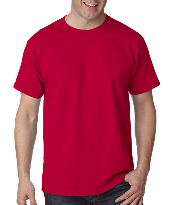 cd32a576 Wholesale Blank T-Shirt 5250 Hanes Adult Authentic Tagless T-shirt | Buy in  Bulk — JonesTshirts
