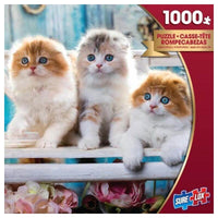 Sure Lox - 1000 piece Puzzle Scottish Fold Kittens
