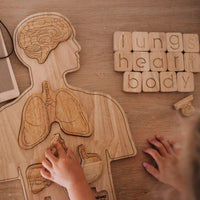 Qtoys - Wooden Anatomy Puzzle