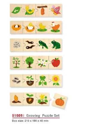 Viga - Growing Life Cycle Puzzle