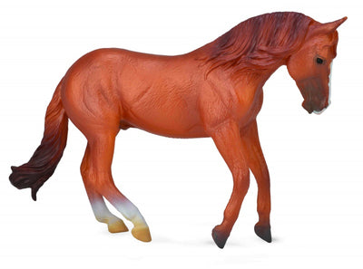 Collecta - Australian Stock Horse Stallion Chestnut