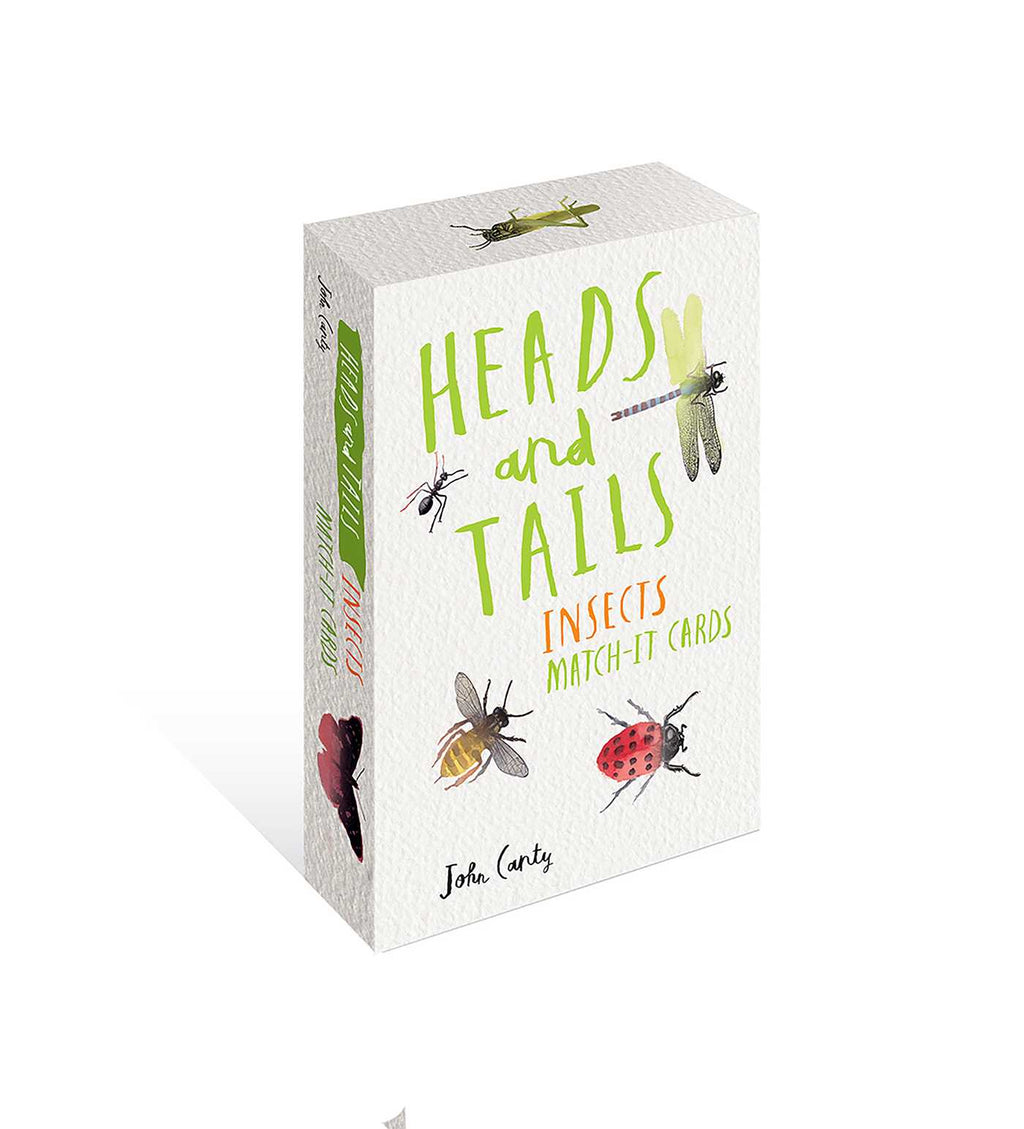 Heads and Tails Match-It Cards Insects